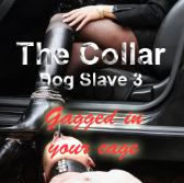 The Collar - Dog Slave 3 - Gagged in your Cage
