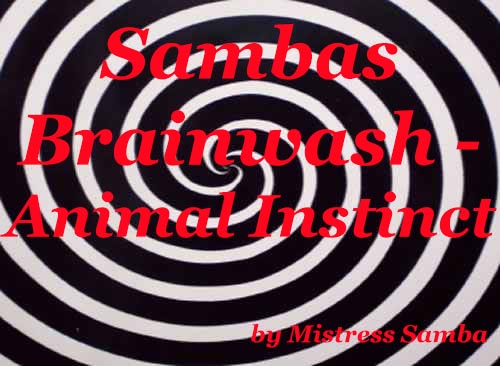 Sambas Brainwash Animal Instinct